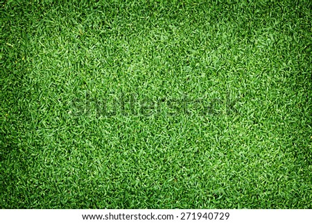 Golf Courses green lawn