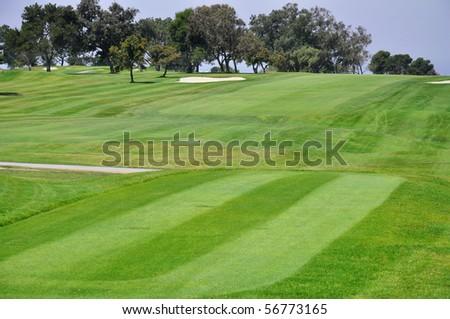 golf fairway - stock photo