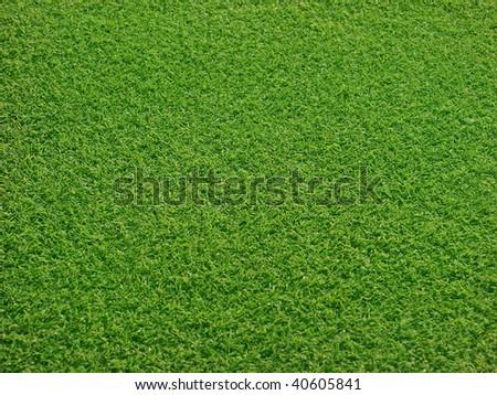 Golf greens - stock photo
