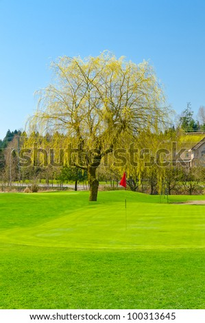 Golf place with gorgeous green - stock photo