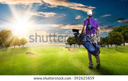 Golf Player in a purple shirt walking with a bag of golf clubs on his back, on a golf course.