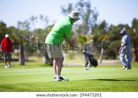 Golf player putting on the green in a golf course. - stock photo