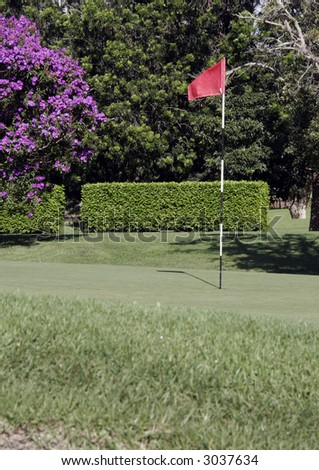 Golf Putting Green With Flag And Grass In The Foreground - stock photo