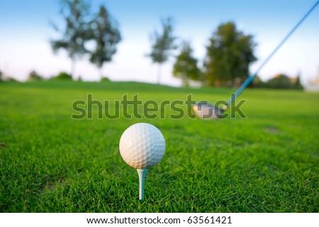 Golf tee ball club driver in green grass course horizon trees - stock photo