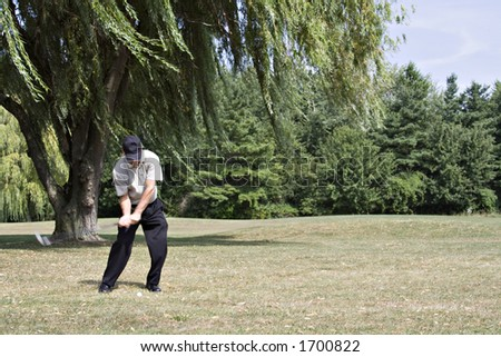 Golfer hitting from under beautiful willow tree - scenic golf course - stock photo