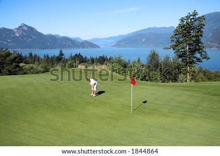 Golfer Putting - stock photo
