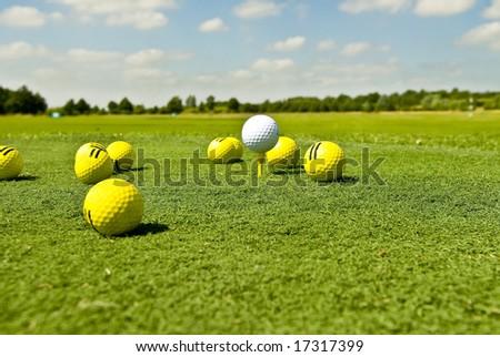 Golfgreen - stock photo