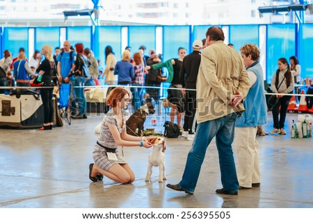 GOMEL, BELARUS - MAY 11, 2015: People and dogs visit exhibition International dog show, important event dedicated to dogs and their owners. - stock photo