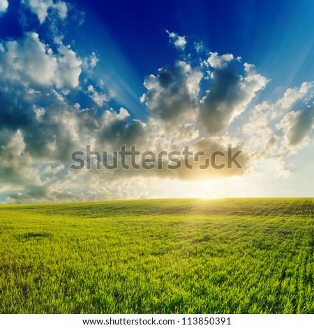 good sunset over green field - stock photo