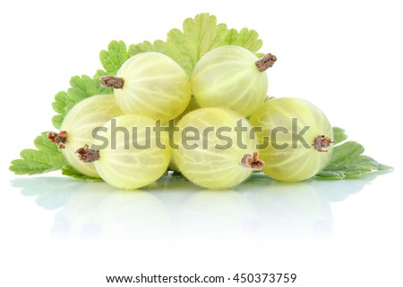 Gooseberries gooseberry berries fresh fruits fruit isolated on a white background - stock photo