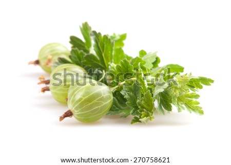 gooseberries isolated on white - stock photo