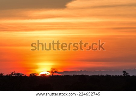 Gorgeous African Sunset in Kruger National Park - stock photo