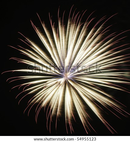 Gorgeous bloom of fireworks with thick feathery white streaks, thin multicolored streaks on the outside, and delicate blue streaks emanating from the center - stock photo