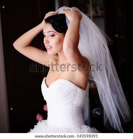 Gorgeous brunette  bride is getting ready  in the morning - stock photo