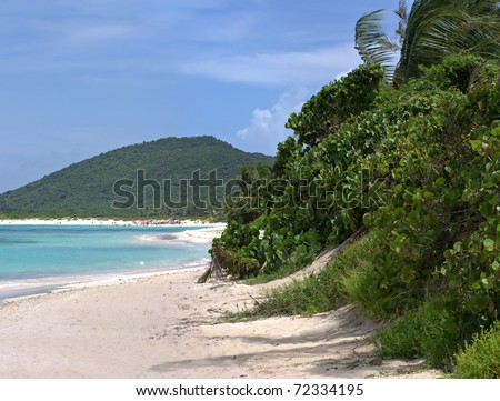 Gorgeous coconut palm trees overlooking Flamenco beach on the Puerto Rican island of Culebra. - stock photo