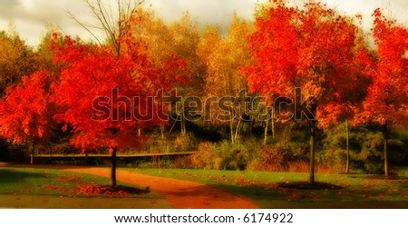 Gorgeous fall colors - stock photo