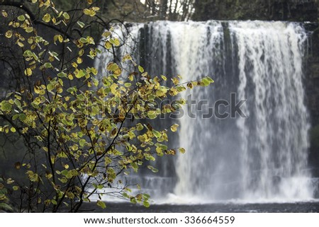gorgeous fall colour near waterfalls in south wales