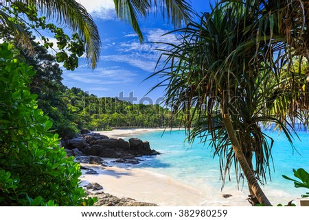 Gorgeous Freedom Beach at morning, Phuket, Thailand / Freedom beach, Phuket, Thailand - stock photo