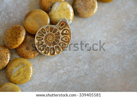 Gorgeous jewelry with fossils. Petrified wood necklace and ammonite pendant. - stock photo