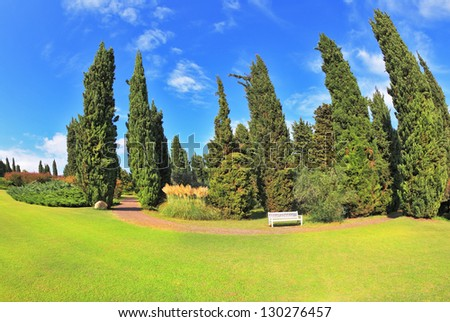 Gorgeous lawn in a park surrounded by cypress trees. To rest at the track is a handy white bench.  �¢??