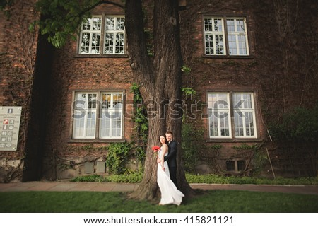 Gorgeous newlywed posing near beautiful wall of plants bushes trees in their wedding day - stock photo