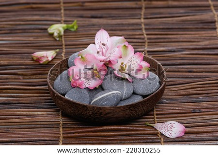 gorgeous orchid with gray stones in wooden bowl with petals on mat  - stock photo