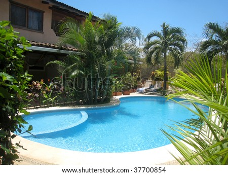 gorgeous swimming pool surrounded by palms - stock photo