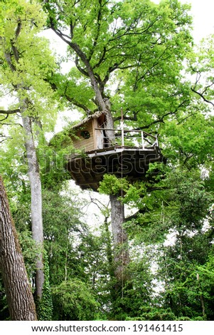 gorgeous treehouse in a green tree - house in a tree - stock photo