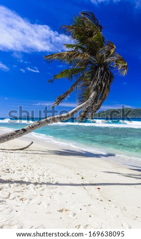 Gorgeous tropical beach on a sunny day.  - stock photo