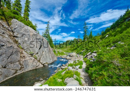 Gorgeous view at the trail along the river, creek at the mountain valley. North America. - stock photo