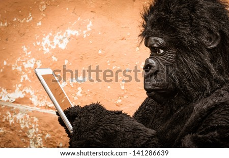 Gorilla with Tablet - stock photo