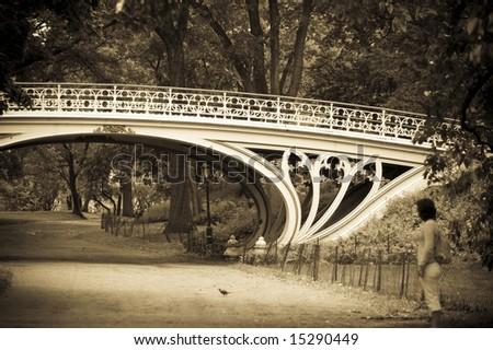 Gothic Bridge in Central Park, New York. - stock photo