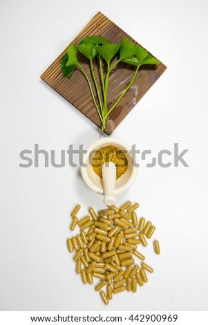 gotu kola, asiatic pennywort, centella asiatica, medicine capsule, mortar and pestle on white background - stock photo