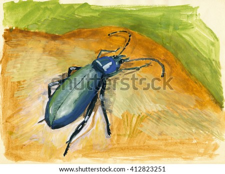 Gouache painting of a beetle on brown and green