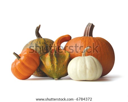 gourds and such - stock photo