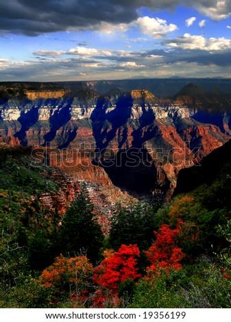 gourgeous autumn in Grand Canyon, Arizona, USA - stock photo