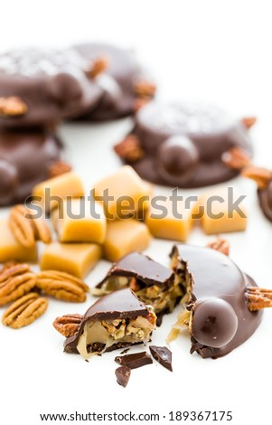 Gourmet Caramel Pecan Turtles made with milk chocolate and whole pecans.