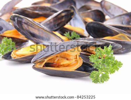 gourmet mussels with parsley