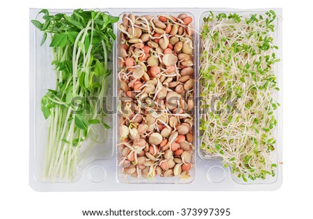 gourmet pack of alfalfa,snow peas and lentils isolated on white - stock photo