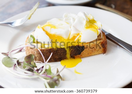 Gourmet poached free range eggs on toast with dripping yolk - stock photo