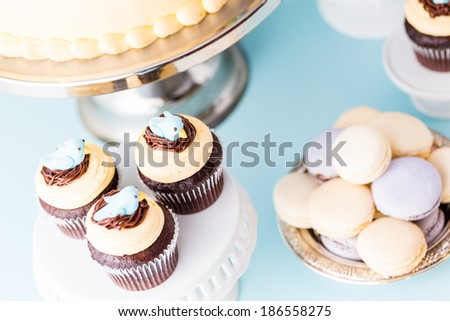 Gourmet Spring two layer cake with blue birds and spring flowers. - stock photo
