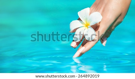 Graceful gentle hands , hand care . Beautiful hands are washed in water - stock photo