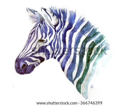 gradient zebra on a white background. Watercolor zebra. Watercolor wild animals.Watercolor pets. Watercolor creative poster. Tee shirt graphic. Watercolor jungle. Africa Symbol . Watercolor Africa