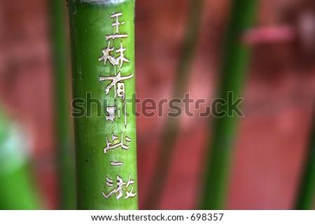 graffiti on bamboo - stock photo