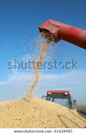Grain auger of combine pouring soy bean into tractor trailer - stock photo