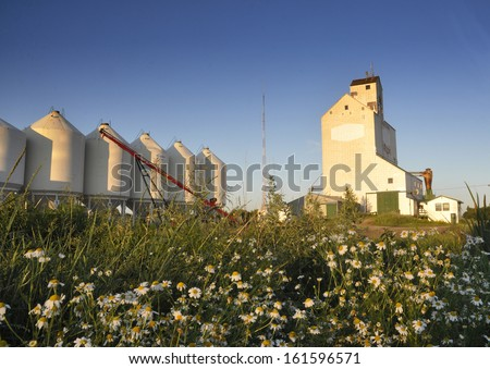 grain elevator in the prairie province - stock photo