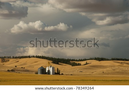 Grain elevator, silos and evening clouds, Latah County, Idaho, USA