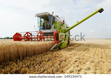 grain harvester combine work in field  - stock photo