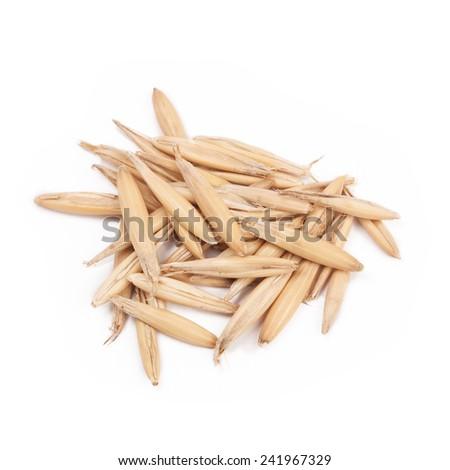 grain of oats in closeup - stock photo