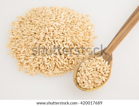 Grain of oats isolated on a white background